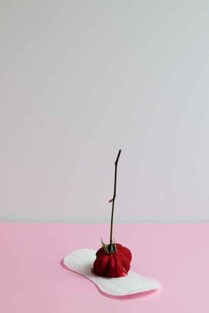 menstruacija menstrualna casica menstrualna casica menstruacija kasni menstruacija na 20 dana menstruacija simptomi menstruacija trajanje menstruacija forum platneni ulosci za menstruaciju pamucni ulosci za menstruaciju ulosci za menstruaciju